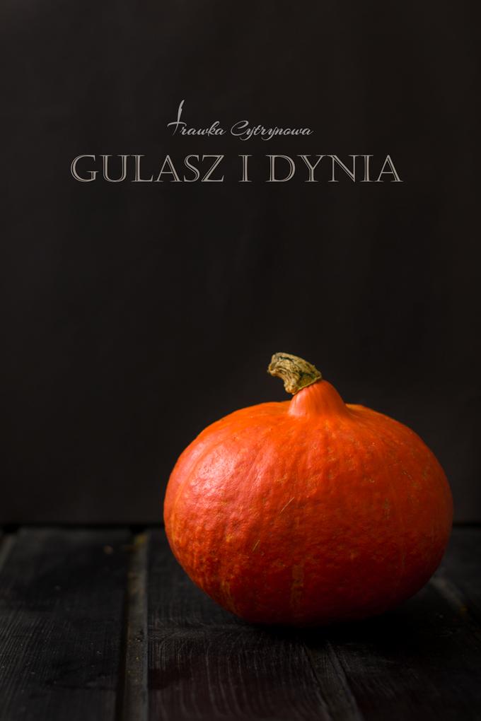 Gulasz-i-dynia